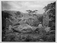 Stela C, with worker. 1885, Maudslay. In the background, Stela B.