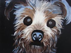 Yorkie, Silkie, acrylic, animal art painting on streched canvas