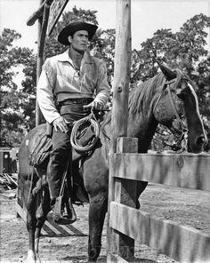 Cheyenne Cowboy Clint Walker Photo 2 Riding A Horse Tarzan, Clint Walker Actor, Cheyenne Bodie, Monochrome, Old Western Movies, Tv Westerns, Thing 1, Western Cowboy, Cowboy Art