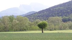 Country Roads, Mountains, Nature, Travel, Naturaleza, Viajes, Destinations, Traveling, Trips