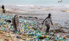 Plastic bottles washed ashore at Korle Gono beach, Ghana