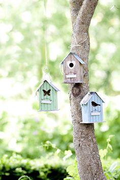 ...den Vögeln zuhören... #ostertag #ernstingsfamily