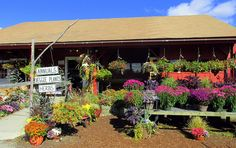 9 Reasons Why New Hampshire Is The Most Underrated State In The US  Who doesn't ❤️️ a cute country farm stand!!