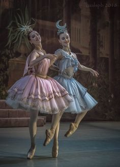"""The Awakening of Flora"". June Photos by Alexander Ku. Ballet Art, Ballet Dancers, The Ballet, Ballerinas, Ballet Costumes, Dance Costumes, Ballerina Costume, Ballerina Dancing, Carnival Costumes"
