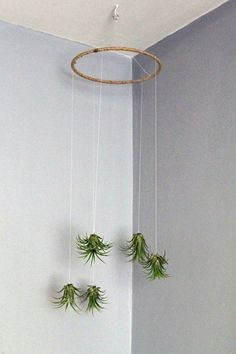 Air Plant Mobile // Natural Living Decor // by GemsOfTheSoil