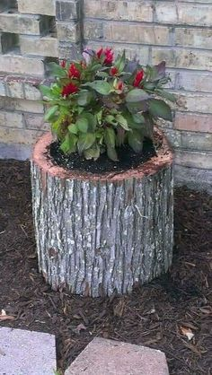 Nice 40 Beautiful And Easy Container Gardening Ideas For Beginners source : worl… - DIY Garten Tree Stump For Garden Art. you can use tree stumps in your garden as planters and they will give you a special charm that everyone will be admired. Garden Cottage, Diy Garden, Garden Crafts, Garden Projects, Garden Art, Garden Design, Fairies Garden, Tree Stump Planter, Tree Stumps