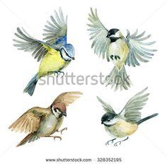 Image result for birds illustration