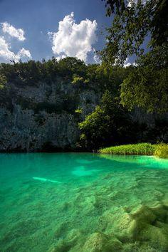 beach, beautiful, green, nature, ocean, water