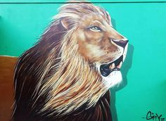 Giffy Duminy South African Artist Graffiti Lion KZN
