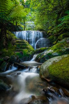 A beautiful waterfall in the Blue Mountains, Australia. Beautiful Waterfalls, Beautiful Landscapes, Beautiful Gardens, Waterfall Photo, Country Scenes, Fantasy Landscape, Nature Pictures, Natural World, Forests