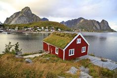 Cabins in Reine, Lofoten Islands, Norway Tromso, Beautiful Places To Visit, Wonderful Places, Oslo, Sweden Stockholm, Places To Travel, Places To See, Norway Beach, Lofoten Islands Norway