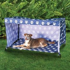 Get these Elevated Indoor/Outdoor Dog Beds to keep your dog comfortable and dry. Included canopy has 3 flaps that roll down for privacy and shade. In 2 sizes.