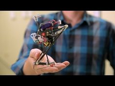 Super agile bush baby robot jumps 4 feet; is cool and totally creepy (video) : TreeHugger