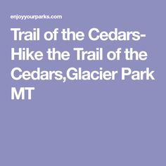 Trail of the Cedars- Hike the Trail of the Cedars,Glacier Park MT
