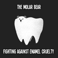The Molar Bear