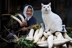 "For the last 13 years Japanese photographer Miyoko Ihara has been taking pictures of her grandma, Misao, to commemorate her life. 9 years ago, 88-year-old Misao found a stray odd-eyed cat in her shed: she called it Fukumaru, hoping that ""the god of fuku (good fortune) would come and everything will be smoothed over like maru (circle)."" Miyoko has been photographing their beautiful friendship and the way they go about their daily routine ever since."