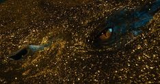 Smaug - Lord of the Rings Wiki