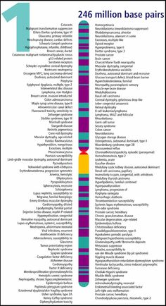 Part of the Human Genome Project. Use this website http://web.ornl.gov/sci/techresources/Human_Genome/posters/chromosome/index.shtml to find the other chromosomes and other good stuff.