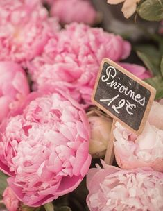Peonies in Paris.