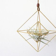 Double Diamonds Modern Minimalist Geometric Hanging Ornament, Mobile, and Air Plant Holder Bamboo Plants, Air Plants, Indoor Plants, Large Planters, Hanging Planters, Diamond Decorations, Hanging Ornaments, Crafty Craft, Plant Hanger