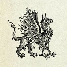 Let's try to talk sense here. Mythological Creatures, Mythical Creatures, Griffin Tattoo, Gothic Gargoyles, Griffins, Mystery Of History, Dragons, Celtic Designs, Tattoo Sketches