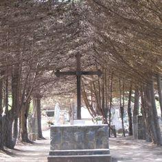 @indiomario Cementerio de Zapallar, Chile