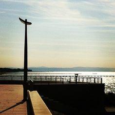 Twitter / Immagini recenti di @GradoGiallo #grado #sea #alba