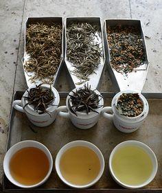 Sri Lanka sexes up Ceylon tea's image   The Japan Times