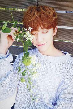 Seventeen - Xu Minghao  (The8)
