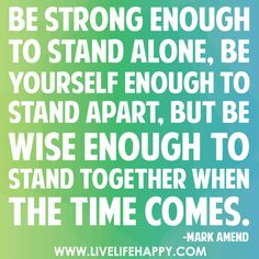 Mark Amend quotes   ... but be wise enough to stand together when the time comes. -Mark Amend