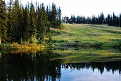 Scenic shot of Silver Star Mountain, Vernon BC -- Curated by: Ultimate Social Club Beautiful Scenery, Beautiful Places, Vernon Bc, Social Club, Fall Photos, Silver Stars, Tourism, Mountain, Live
