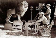 """""""Tuotteko vielä yhden statistin...rupee kisu olemaan rauhaton....Making the MGM Logo"""