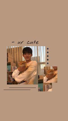 kpop 𝓛 𝓾 𝓬 𝓪 𝓼 Lucas Nct, Wallpaper Animes, Boys Wallpaper, Aesthetic Iphone Wallpaper, Aesthetic Wallpapers, Picsart Tutorial, Me Anime, Instagram Story Ideas, Kpop Aesthetic