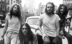 cactus band - Google Search