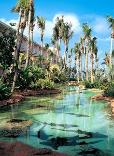 Atlantis - Royal Tower in Caribbean Bahamas