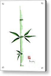 Green Bamboo Plant Grass Bamboos Tribe Woody Watercolor Painting Acrylic Print by Johana Szmerdt