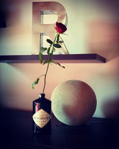 #rose #hendricks #ginandrose