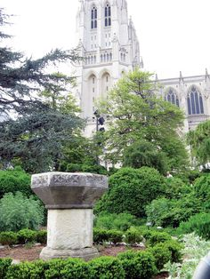 Fresh Clips: The Enchanted Herb Garden of the Washington National Cathedral - Grow - Herb Companion
