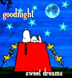 Good Night Hug, Good Night Quotes, Good Morning, Snoopy Love, Snoopy And Woodstock, Pomes, Good Night Greetings, Peanuts Snoopy, Charlie Brown