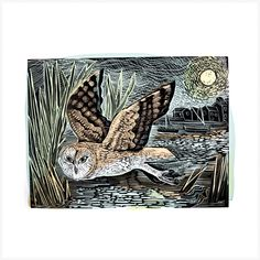 Buy Angela Harding lino and silkscreen prints inspired by the British countryside. Perfect for anyone with a love for nature and animals. 1000 Piece Jigsaw Puzzles, Original Prints, Linocut, Linocut Prints, Abstract Artwork, Art, Lithograph, Owl Art, Prints