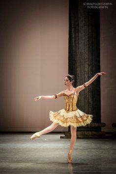 August | 2015 | Ballet: The Best Photographs. #Ballet_beautie #sur_les_pointes Ballet_beautie, sur les pointes !
