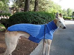 Free Knitting Patterns For Greyhound Dogs : Ravelry: The Ozzie large dog sweater pattern by Jenna Greer knit the dog ...
