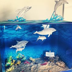 Ava's Ocean Diorama. Under the Sea. ideas Ava's Ocean Diorama. Dolphin Habitat, Ocean Habitat, School Projects, Projects For Kids, Art Projects, Project Ideas, Ocean Projects, Animal Projects, Dolphin Craft