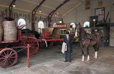 Last Vaux brewery horse dies after decades at Beamish Museum Transport Museum, Sunderland, Abstract Flowers, Brewery, Past, England, Tutorials, Horses, Spaces