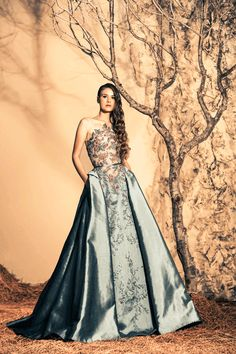 Stunning Evening Dresses By Ziad Nakad Fall/Winter 2014/2015 jaglady