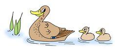 Lintutapahtuma kouluille, päiväkodeille, perheille ja muille lapsiryhmille! Tapahtuman tarkoituksena on tutustua lintuihin ja lintuharrastukseen etsimällä merkkejä lintujen pesinnästä. Kannustamme kaikkia lapsiryhmiä lähtemään linturetkelle! Tarjolla on runsaasti maksutonta materiaalia ryhmänvetäjän tueksi.