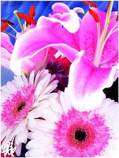 Gerberas & Lillies my favourites