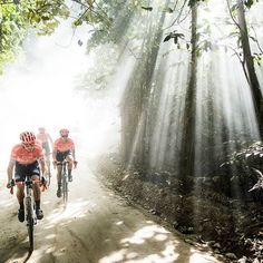 @beardmcbeardy cyclingtips