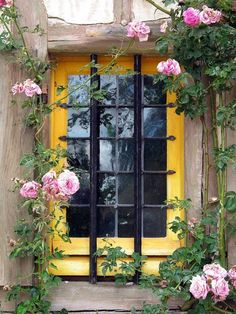 The title and ownership of this photograph has been removed. Should be:  Yellow Window With Pink Roses at Marie Antoinette's Hamlet, Versailles, France 2011 / by Marny Perry Bellasecretgarden