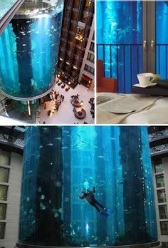 AquaDom- world's largest cylindrical aquarium